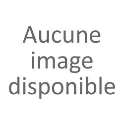 Friton de canard (190g)